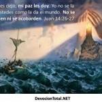 La paz que Dios te da…