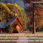 Promesa de Dios y esperanza nuestra