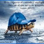 Versículos de ánimo y fortaleza para tiempos difíciles