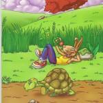 ¿Liebre o tortuga?