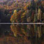 14 de Octubre – Trinchera